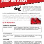 De la poudre aux yeux pour les AESH