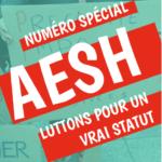 AESH : luttons pour un vrai statut – Une brochure de SUD éducation